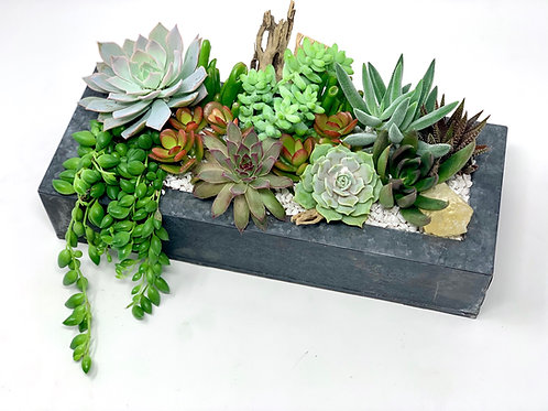 Low and Lush Arrangement