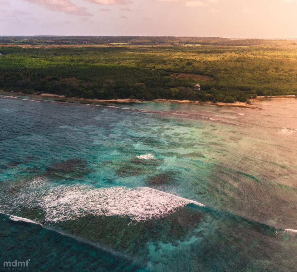 Guadeloupe day3-9.jpg