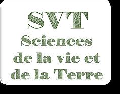 SVT_2.png