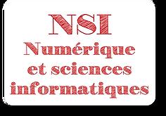 NSI_2.png
