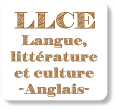LLCE_2.png
