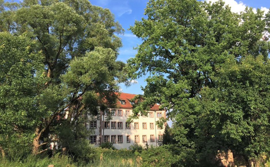 """""""Fürstenbau"""" von Süden"""