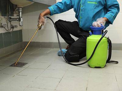 pest-control-services-muscat-pr.jpg