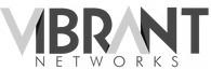 Vibrant_Networks_LogoV2.0-ConvertImage