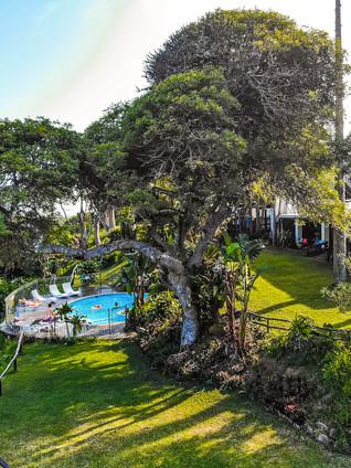 St. Lucia Eco Lodge - Drone 03-2.jpg