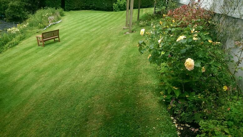 Beautiful formal lawns