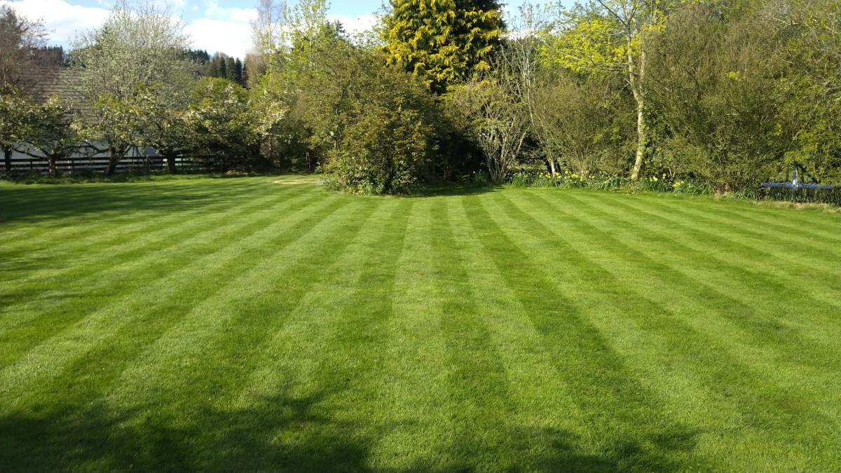 Beautiful lawn Comrie.jpg