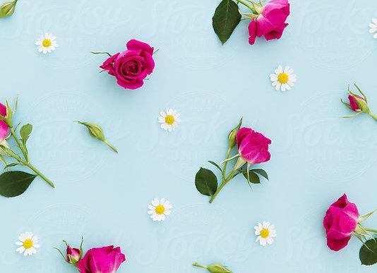 Designers Choice- Queen Sized Vase Arrangement