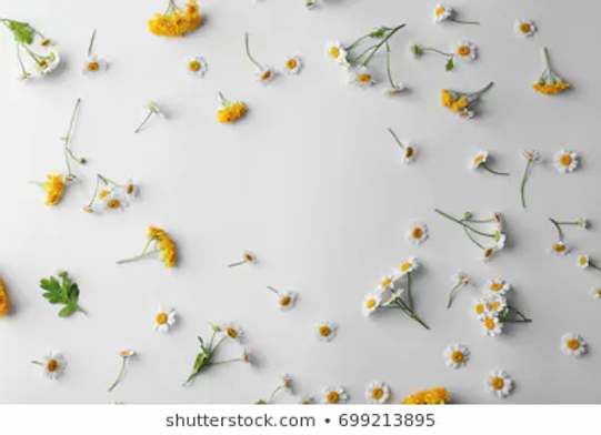 Designers Choice- Medium Wrapped Bouquet