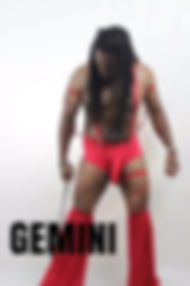 GEMINI, Atlanta Strippers, Atlanta Male Strippers, Atlanta Black Male Strippers, Atlanta Male Dancers, Atlanta Black Male Dancers, Atlanta Male Entertainers, Atlanta Black Male Entertainers, Atlanta Male Revues, Atlanta Male Strip Clubs
