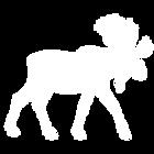 white_moose.png