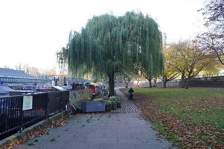 PAD-Stone Wharf Gardens-Existing Photo.J
