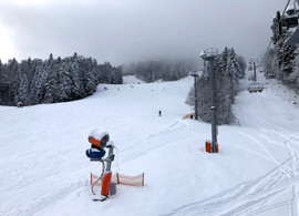 Ski2.jpg