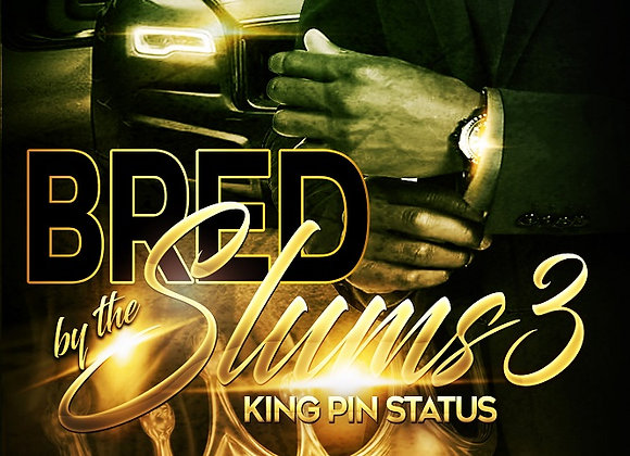 Bred By The Slums Part 3 by Ghost