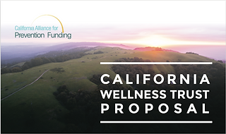 References - California Wellness Trust Proposal