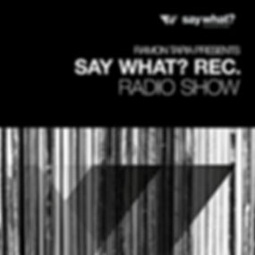 say-what-recordings-show.jpg