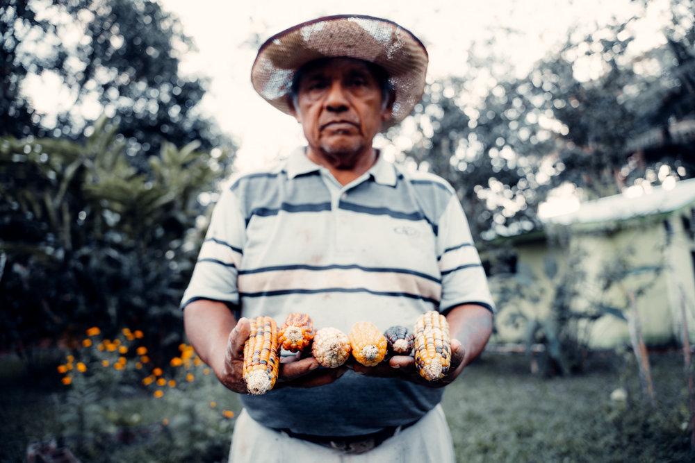 Maya Traditional Farming