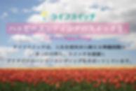 banner-8.jpg