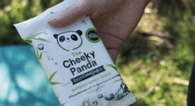 BIODEGRADABLE BAMBOO WIPES