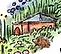 Wildscaped_Homestead___WildscapingWorldw