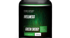 WELLNESS GREEN ENERGY