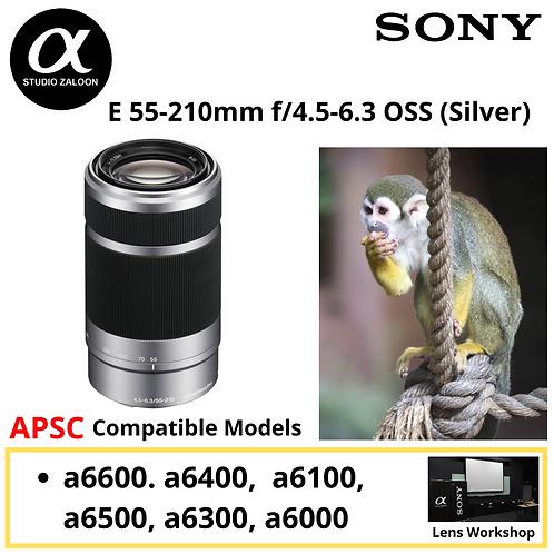 Sony SEL 55-210mm SIL f/4.5-6.3 OSS (Silver) SEL55210
