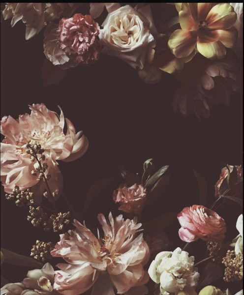 Ashley Woodson Bailey wallpaper, Floral Wallpaper, Foral Wall Mural