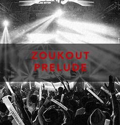 Worldwidewomb_zoukout.jpg
