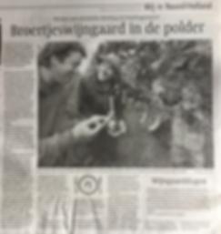 krant 2019.png