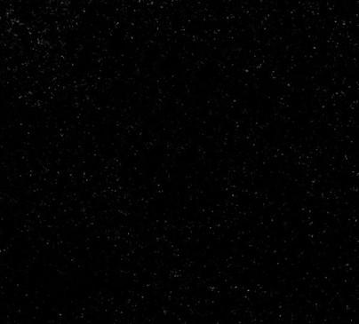 Rex Black.jpg