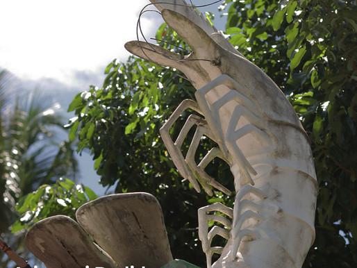 Asistensi Perusahaan Budidaya Lobster dan Udang