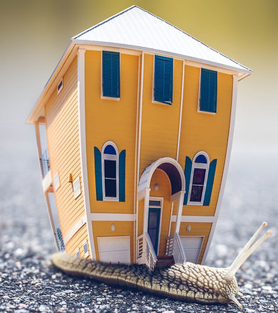microphotography-of-orange-and-blue-house-miniature-on-brown-955793_edited.jpg