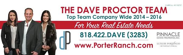 Dave Proctor Team Banner.png