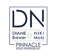 D&N_Pinnacle_final_logo.png