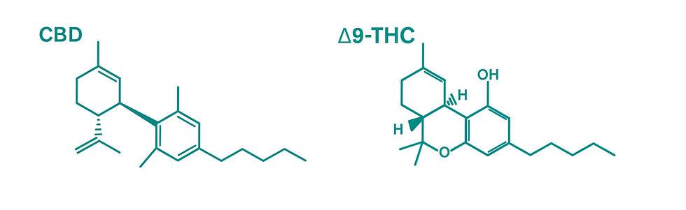 Cannabinoids vs. Cannabimimetic Compounds