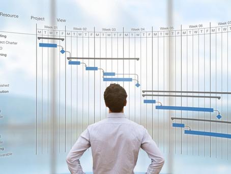 SAP Project Management Consultancy