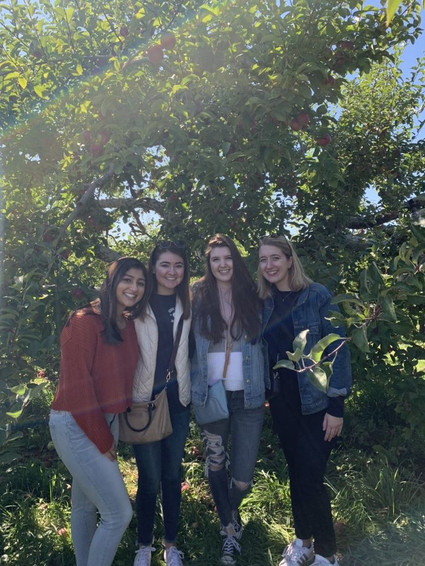 Beta Lambda Apple Picking