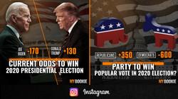 IG Feed 2020 November Election