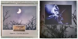 "Album ""To The Ancient Tree"""