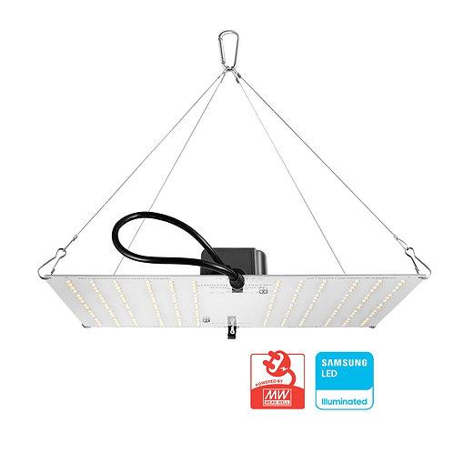 HLG 100 V2 LED