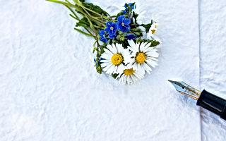 bloom-blooming-blossom-433468.jpg