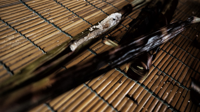 Food / Mentawai