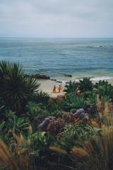 lifeguardscalifornia.jpg