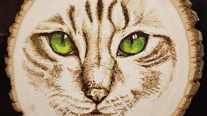 Cat Eyes Wood-burning