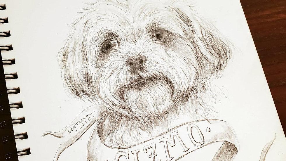 11x14 Portrait- Person/Pet (Drawn by Jamie)