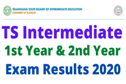 TELANGANA INTER RESULTS 2020 (TSBIE INTER RESULTS 2020): MARKS MEMOS, RECOUNTING, REVERIFICATION