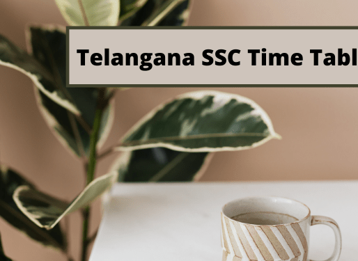 TS SSC Public Exams 2021 Time Table/ Schedule: Telangana SSC Exams 2021