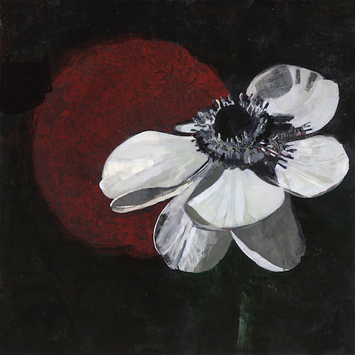White Anemones with Red