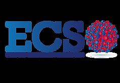 ECSO_Final_transparency-02_RVB_300DPI.pn