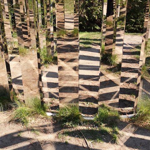 Jeppe Hein, Semi Circular Mirror Labyrinth, 2013